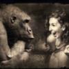 humor-gorilla